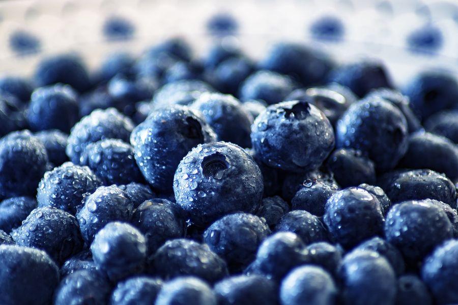 blueberry-3460423_1920.jpg