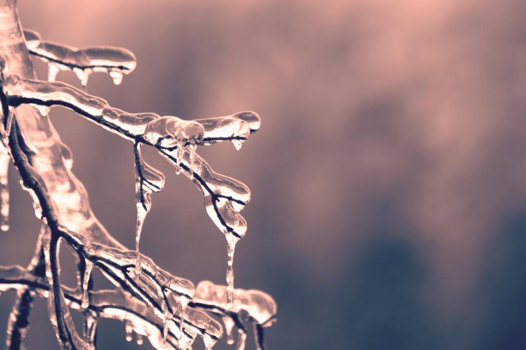 Способы закаливания: вода, воздух и криотерапия