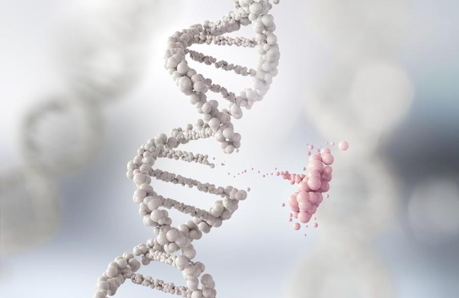 генетика.jpg