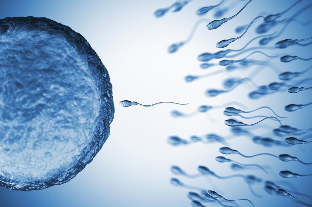 Новое открытие в лечении мужского бесплодия