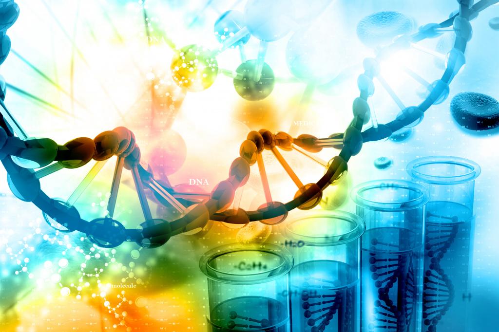 Хромосомные и генные болезни откуда они