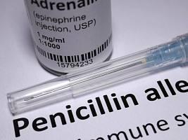 Аллергия на пенициллин: 5 фактов, про которые вы могли не слышать