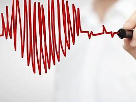 Биопечать в действии. Печатаем сердце, почки, печень