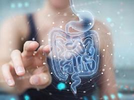 Бактерии кишечника могут помочь диагностировать диабет