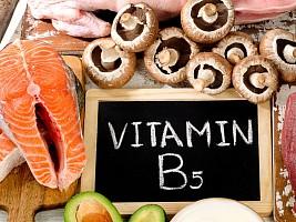 Пантотеновая кислота, пантенол или витамин В5: роль в организме, причины и признаки дефицита