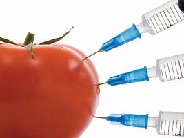 ГМО: что это и стоит ли есть?