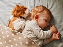 Как полноценный сон защищает мозг