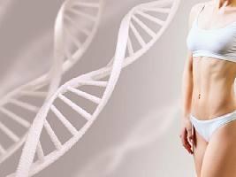 ДНК-диета: виды, недостатки и реальная эффективность