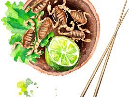 Закуски из насекомых, которые заменят вам еду