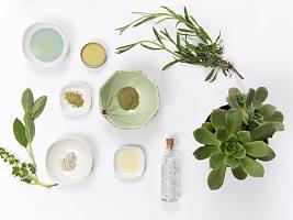 Арган, мята и асаи: 10 растений, которые полезны для кожи