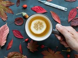 6 мифов о простуде и гриппе